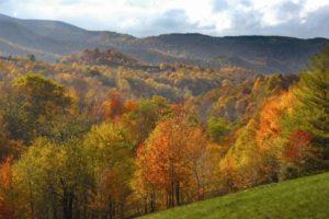 original_George-Washington-and-Jefferson-National-Forest.jpg