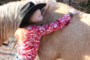 original_buksbari-ranch-horse-franklin-county0.png