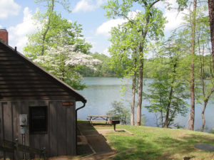original_fairy-stone-state-park-cabin-view-patrick0.jpg