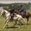 Hunter's Raid Civil War Trail