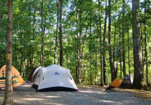 original_natural-bridge-koa-campground-tent0.png